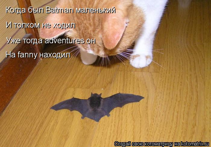 Котоматрица: Когда был Batman маленький Уже тогда adventures он На fanny находил И толком не ходил