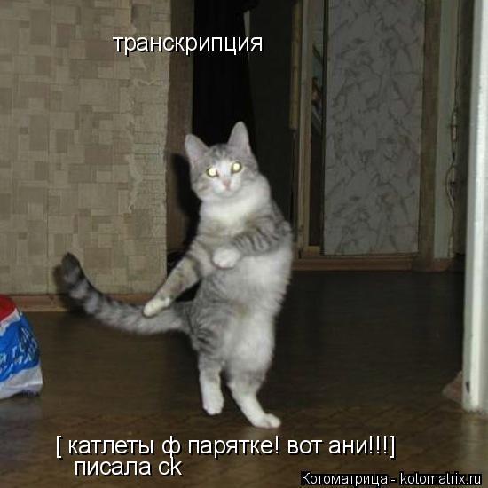 Котоматрица: транскрипция [ катлеты ф парятке! вот ани!!!]  писала ck