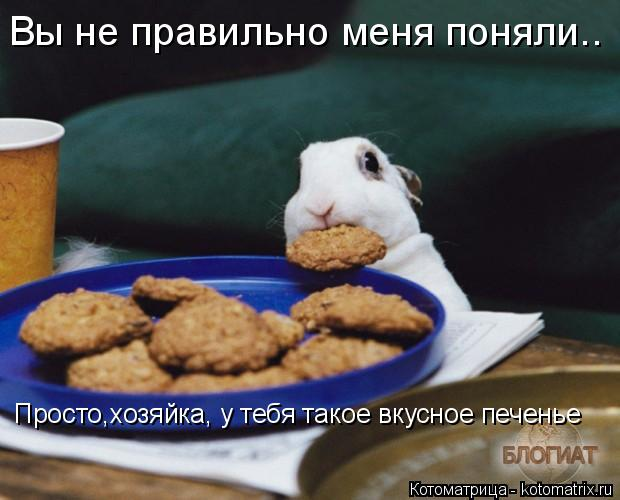 Котоматрица: Вы не правильно меня поняли.. Просто,хозяйка, у тебя такое вкусное печенье
