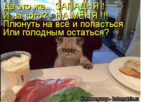 Котоматрица: Да это же... ЗАПАДНЯ ! И на кого? - НА МЕНЯ !!! Плюнуть на всё и попасться Или голодным остаться?