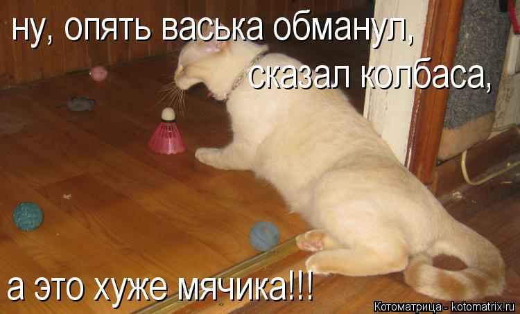 Котоматрица: ну, опять васька обманул, сказал колбаса, а это хуже мячика!!!