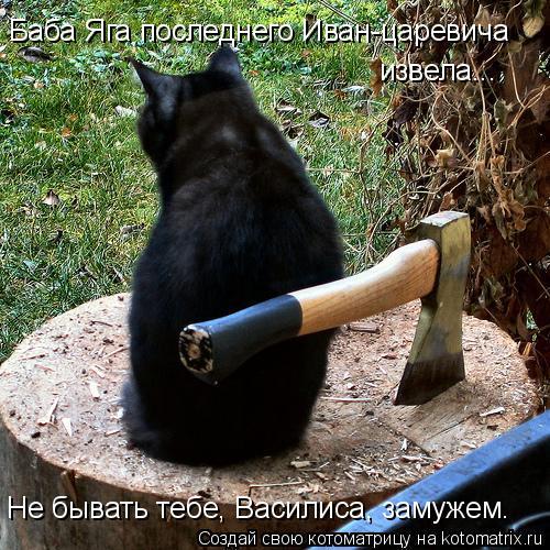Котоматрица: Баба Яга последнего Иван-царевича  извела... Не бывать тебе, Василиса, замужем.