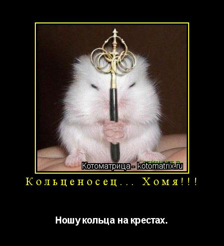 Котоматрица: Кольценосец... Хомя!!! Ношу кольца на крестах.