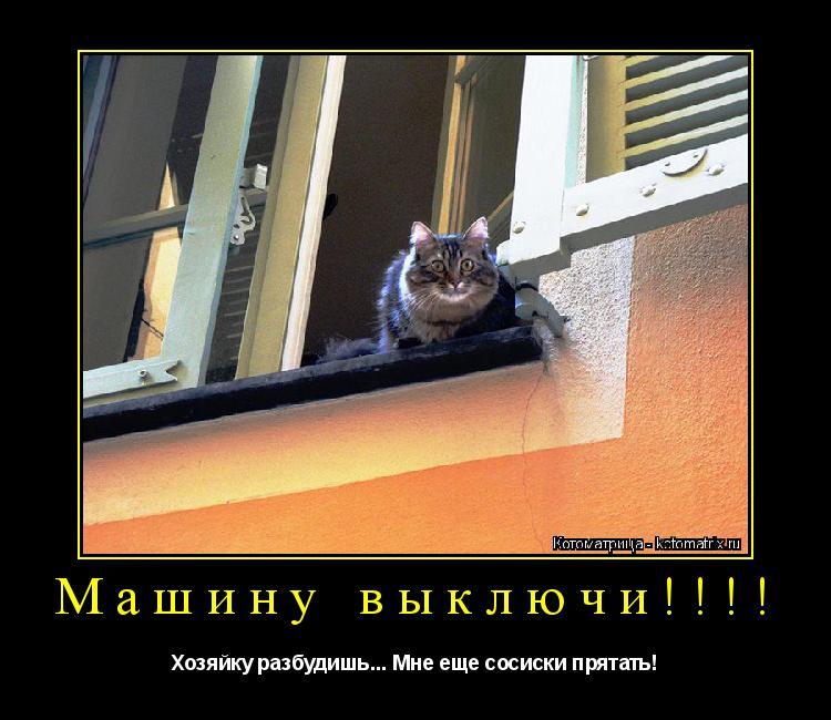 Котоматрица: Машину выключи!!!! Хозяйку разбудишь... Мне еще сосиски прятать!
