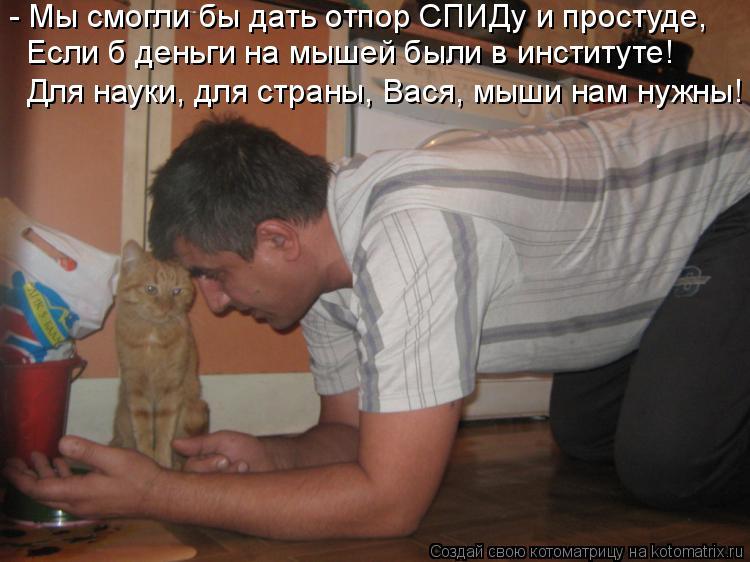 Котоматрица: - Мы смогли бы дать отпор СПИДу и простуде, Если б деньги на мышей были в институте! Для науки, для страны, Вася, мыши нам нужны!