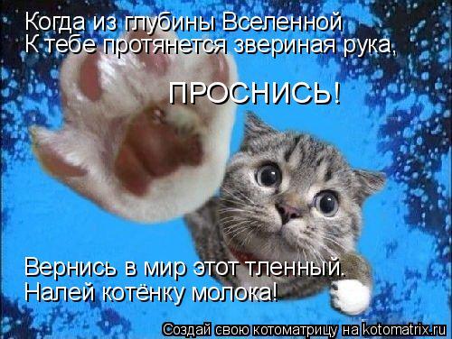 Котоматрица: Когда из глубины Вселенной К тебе протянется звериная рука, ПРОСНИСЬ! Вернись в мир этот тленный. Налей котёнку молока!