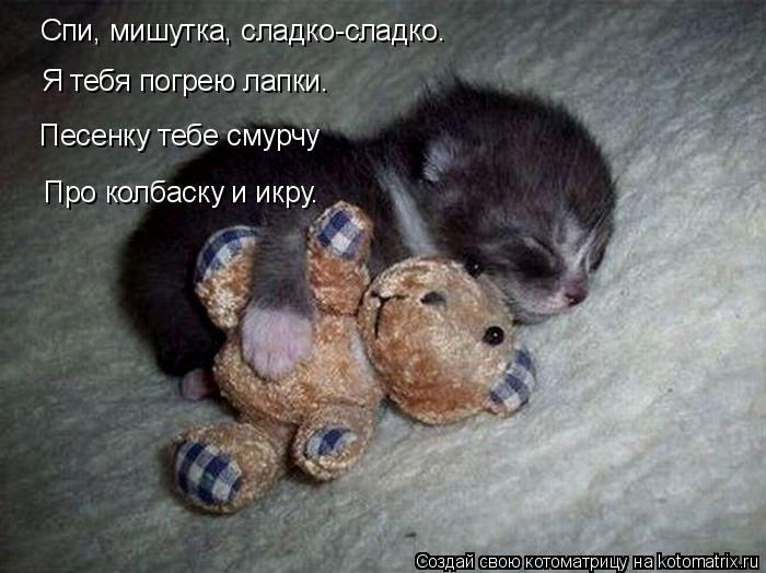 Котоматрица: Спи, мишутка, сладко-сладко. Я тебя погрею лапки. Песенку тебе смурчу Про колбаску и икру.