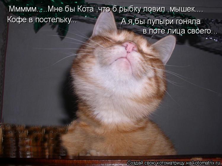 Котоматрица: Ммммм.....Мне бы Кота ,что б рыбку ловил ,мышек.... Кофе в постельку... А я бы пупыри гоняла в поте лица своего...