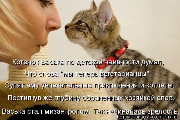 """Котоматрица: Васька стал мизантропом. Так начиналась зрелость. Котенок Васька по детской наивности думал,  Что слова """"мы теперь вегетарианцы"""" Сулят ему у"""
