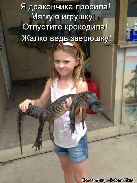 Котоматрица: Я дракончика просила! Мягкую игрушку! Отпустите крокодила! Жалко ведь зверюшку!