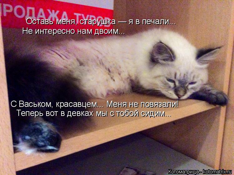 Котоматрица: Оставь меня, старушка — я в печали...  Не интересно нам двоим... С Васьком, красавцем... Меня не повязали!  Теперь вот в девках мы с тобой сидим...