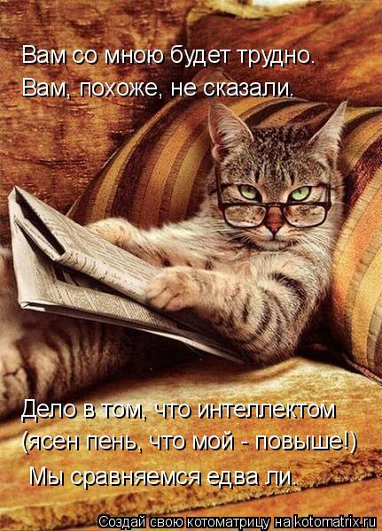 Котоматрица: Вам, похоже, не сказали. Вам со мною будет трудно. Дело в том, что интеллектом (ясен пень, что мой - повыше!) Мы сравняемся едва ли.