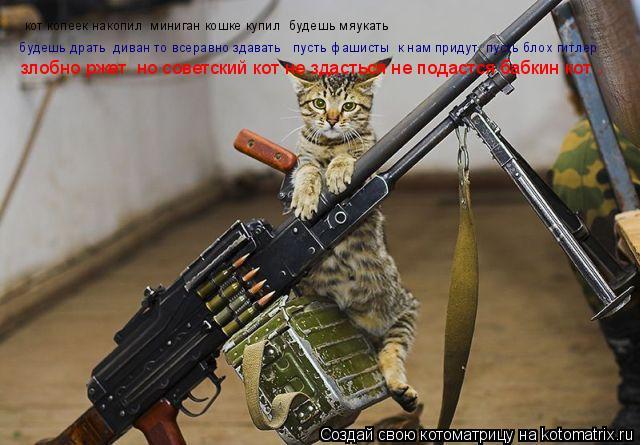 Котоматрица: кот копеек накопил  миниган кошке купил  будешь мяукать   будешь драть  диван то всеравно здавать   пусть фашисты  к нам придут  пусть блох ги