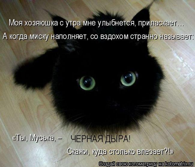 Котоматрица: А когда миску наполняет, со вздохом странно называет: Моя хозяюшка с утра мне улыбнется, приласкает… ЧЕРНАЯ ДЫРА!  «Ты, Муська, –  Скажи, куд