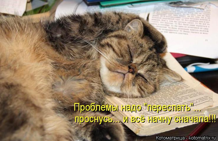 """Котоматрица: Проблемы надо """"переспать""""... проснусь... и всё начну сначала!!!"""