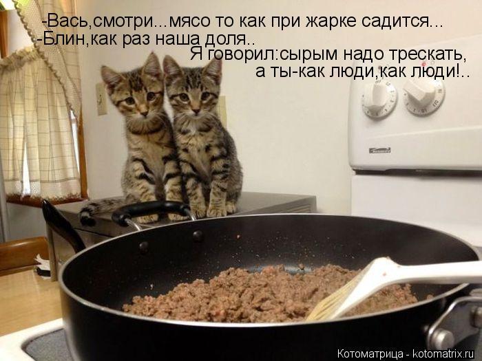 Котоматрица: -Вась,смотри...мясо то как при жарке садится...  -Блин,как раз наша доля..  Я говорил:сырым надо трескать,  а ты-как люди,как люди!..