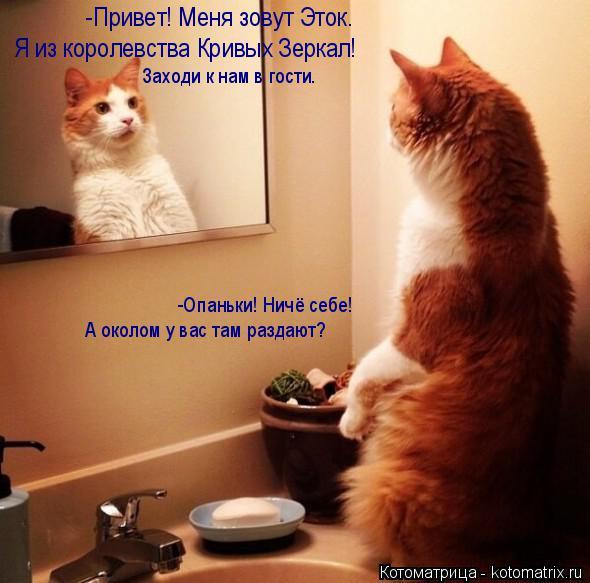 Котоматрица: -Привет! Меня зовут Эток.  Я из королевства Кривых Зеркал! Заходи к нам в гости. -Опаньки! Ничё себе! А околом у вас там раздают?