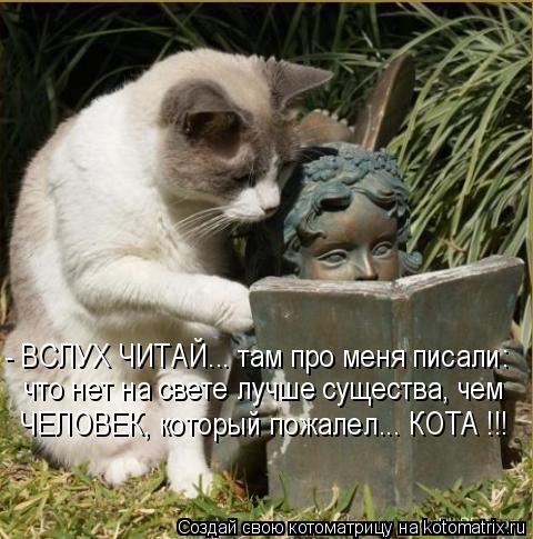 Котоматрица: - ВСЛУХ ЧИТАЙ... там про меня писали: что нет на свете лучше существа, чем ЧЕЛОВЕК, который пожалел... КОТА !!!