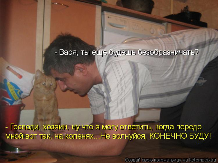 Котоматрица: - Вася, ты ещё будешь безобразничать? - Господи, хозяин, ну что я могу ответить, когда передо мной вот так, на коленях...Не волнуйся, КОНЕЧНО БУД