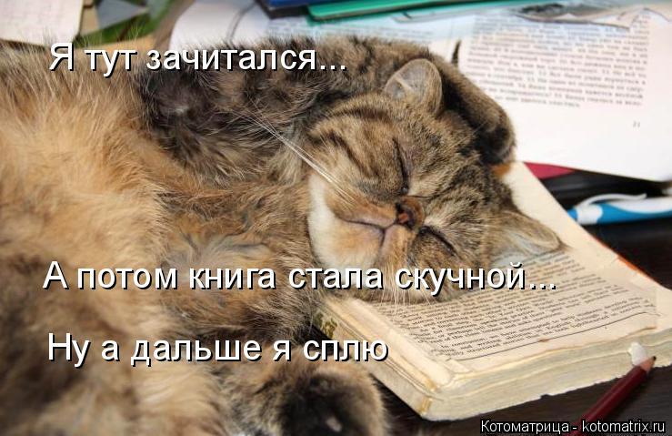 Котоматрица: Я тут зачитался... А потом книга стала скучной... Ну а дальше я сплю
