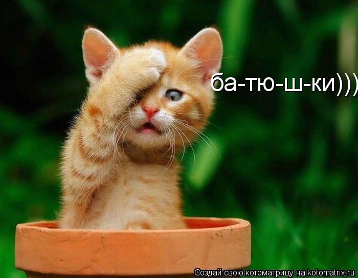 Котоматрица: ба-тю-ш-ки)))