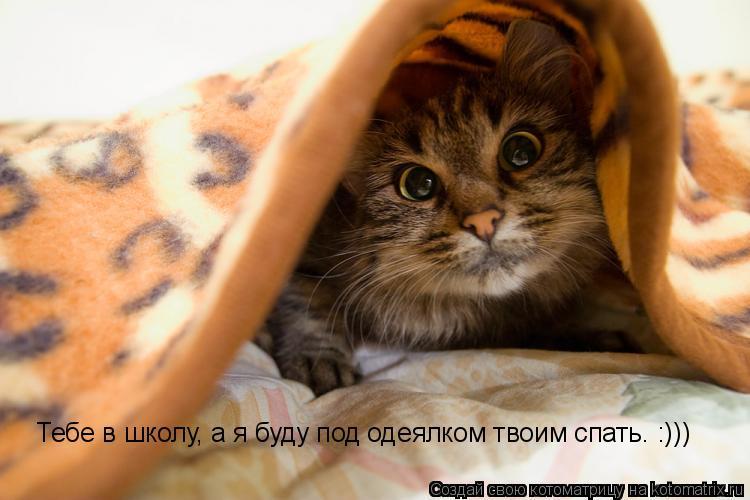 Котоматрица: Тебе в школу, а я буду под одеялком твоим спать. :)))