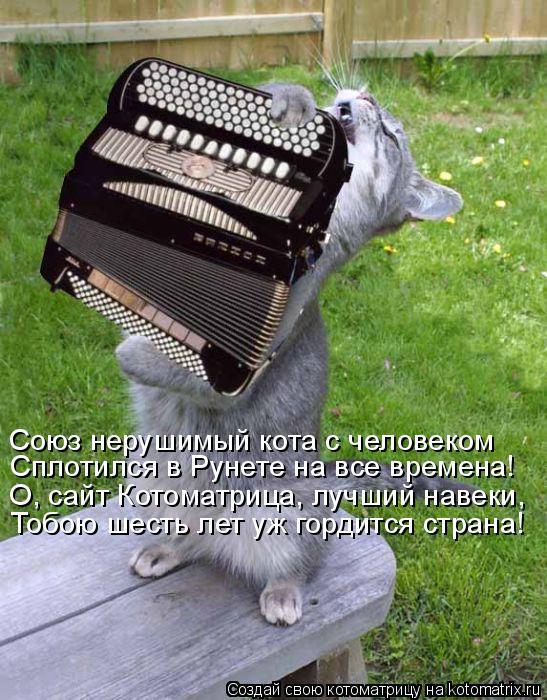 Котоматрица: Союз нерушимый кота с человеком Сплотился в Рунете на все времена! О, сайт Котоматрица, лучший навеки, Тобою шесть лет уж гордится страна!