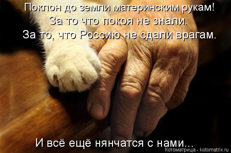 Котоматрица: Поклон до земли материнским рукам! За то что покоя не знали. За то, что Россию не сдали врагам. И всё ещё нянчатся с нами...