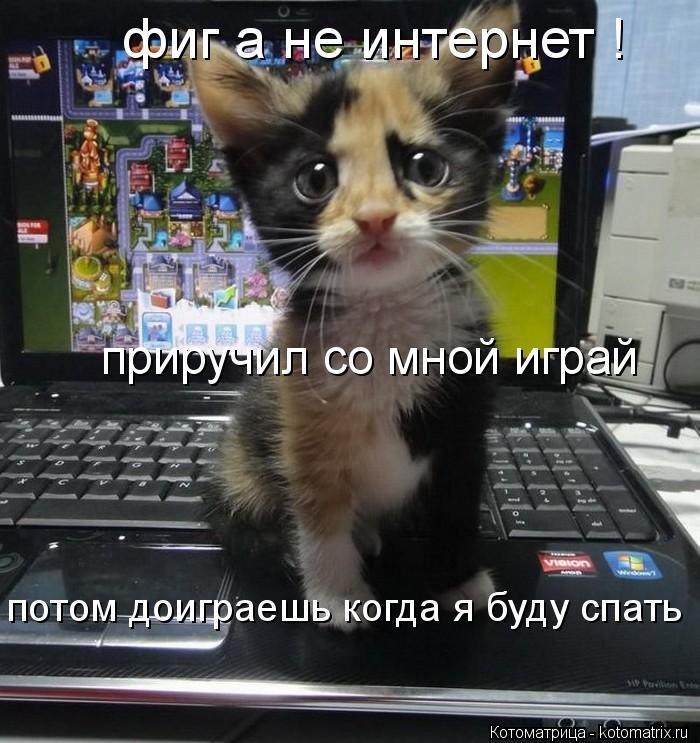Котоматрица: потом доиграешь когда я буду спать  фиг а не интернет ! приручил со мной играй