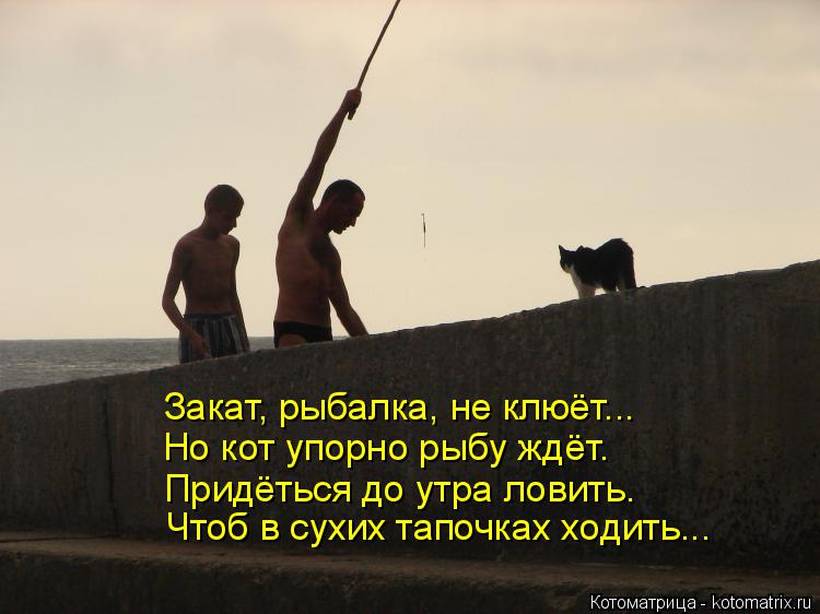 Котоматрица: Закат, рыбалка, не клюёт... Но кот упорно рыбу ждёт. Придёться до утра ловить. Чтоб в сухих тапочках ходить...