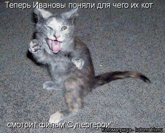 """Котоматрица: Теперь Ивановы поняли для чего их кот смотрит фильм""""Супергерои"""""""