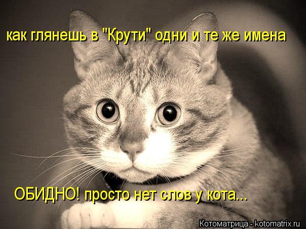 """Котоматрица: как глянешь в """"Крути"""" одни и те же имена ОБИДНО! просто нет слов у кота..."""