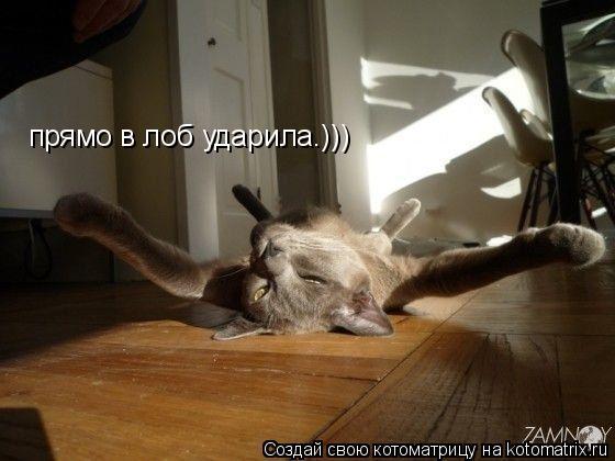 Котоматрица: прямо в лоб ударила.)))