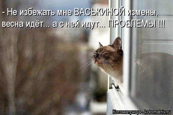 Котоматрица: - Не избежать мне ВАСЬКИНОЙ измены, весна идёт... а с ней идут... ПРОБЛЕМЫ !!!