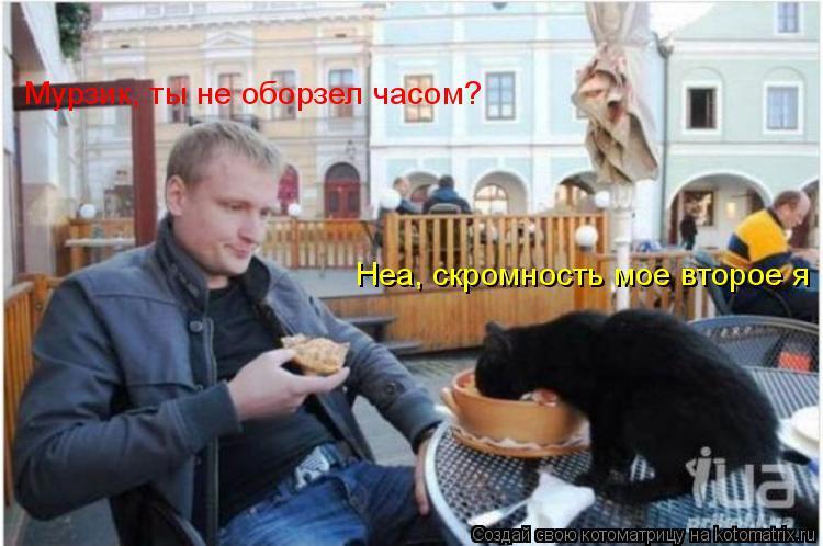 Котоматрица: Неа, скромность мое второе я Мурзик, ты не оборзел часом?