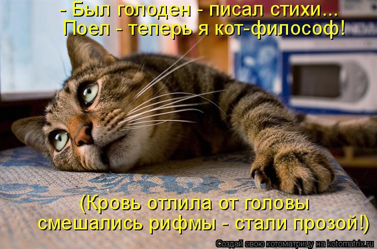 Котоматрица: - Был голоден - писал стихи... Поел - теперь я кот-философ! (Кровь отлила от головы смешались рифмы - стали прозой!)