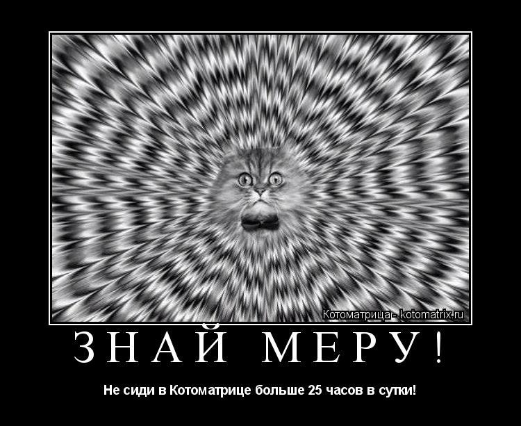 Котоматрица: ЗНАЙ МЕРУ! Не сиди в Котоматрице больше 25 часов в сутки!