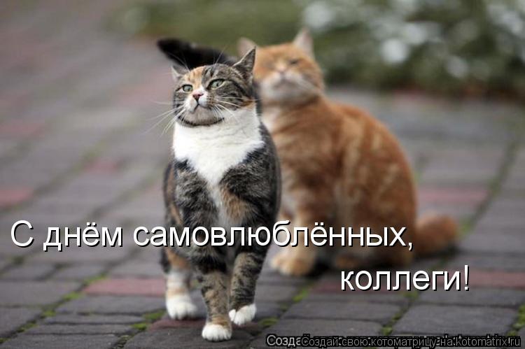 С Днём святого Валентина!!! Kotomatritsa_K