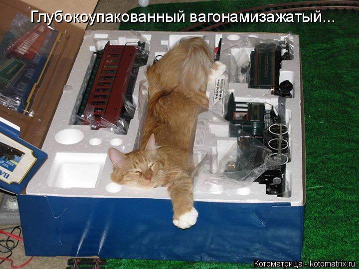 Котоматрица: Глубокоупакованный вагонамизажатый...