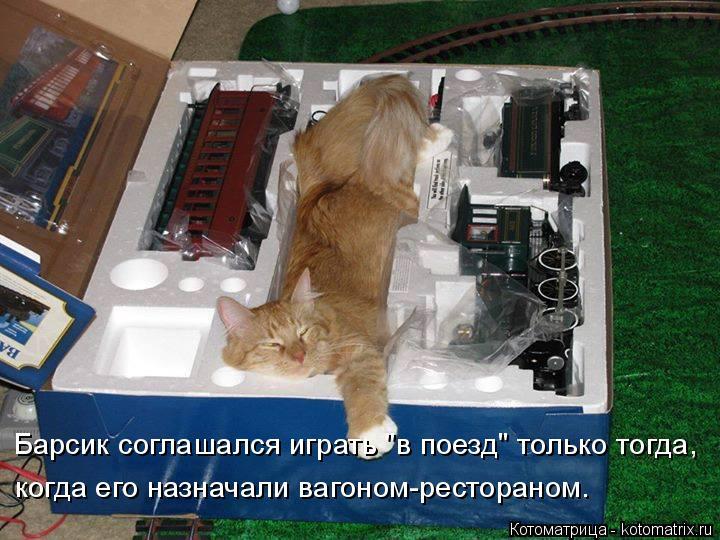 """Котоматрица: Барсик соглашался играть """"в поезд"""" только тогда, когда его назначали вагоном-рестораном."""