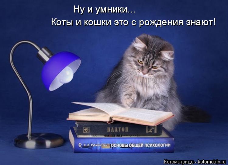 Котоматрица: Ну и умники... Коты и кошки это с рождения знают!