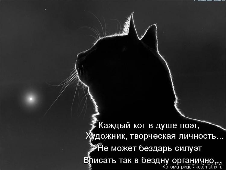 Котоматрица: Каждый кот в душе поэт, Художник, творческая личность... Не может бездарь силуэт Вписать так в бездну органично...