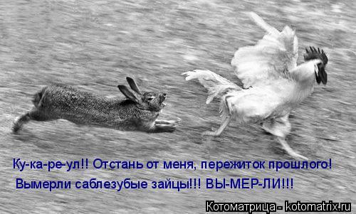Котоматрица: Ку-ка-ре-ул!! Отстань от меня, пережиток прошлого! Вымерли саблезубые зайцы!!! ВЫ-МЕР-ЛИ!!!