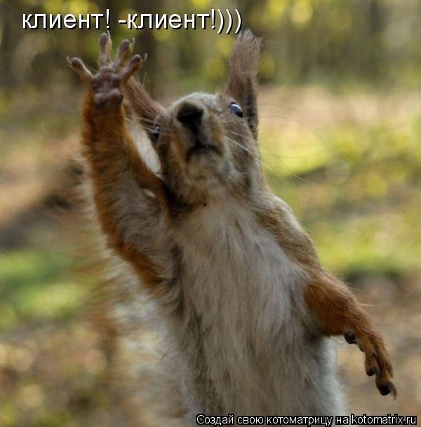 Котоматрица: клиент! -клиент!)))