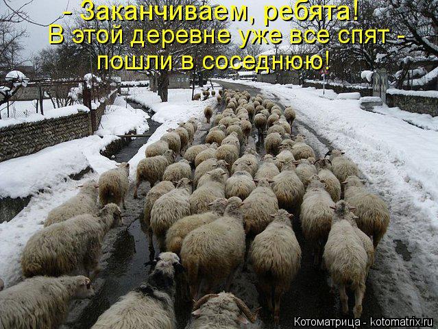 Котоматрица: - Заканчиваем, ребята!  В этой деревне уже все спят - пошли в соседнюю!