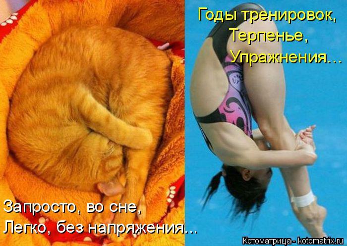 Котоматрица: Годы тренировок,  Запросто, во сне,  Легко, без напряжения... Терпенье,  Упражнения…
