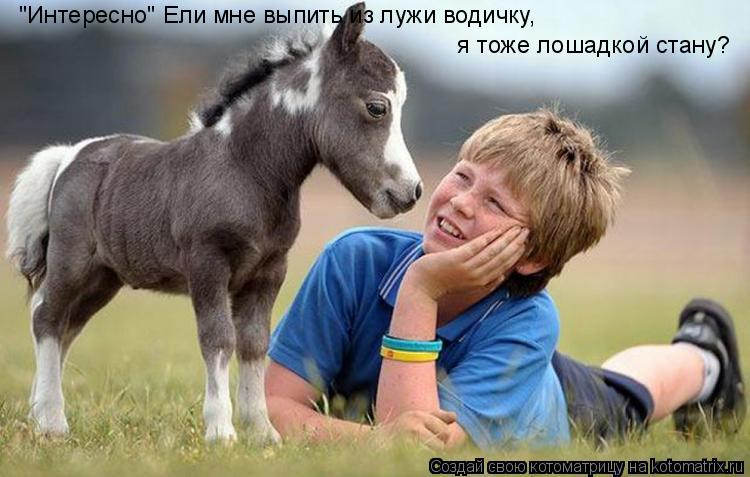 """Котоматрица: """"Интересно"""" Ели мне выпить из лужи водичку,   я тоже лошадкой стану?"""