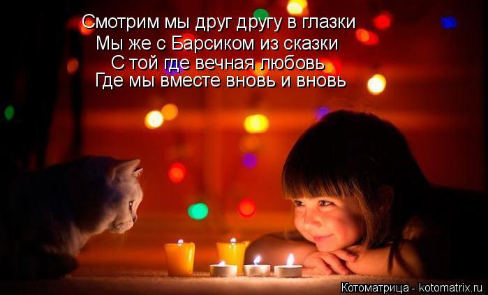 Котоматрица: Смотрим мы друг другу в глазки Мы же с Барсиком из сказки С той где вечная любовь Где мы вместе вновь и вновь