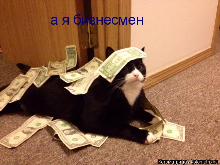 Котоматрица: а я бизнесмен