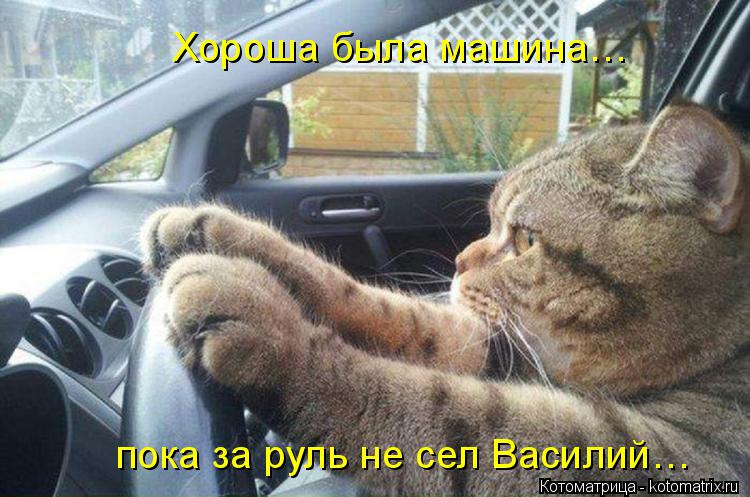 Котоматрица: Хороша была машина…  пока за руль не сел Василий…